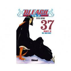 Bleach nº 37