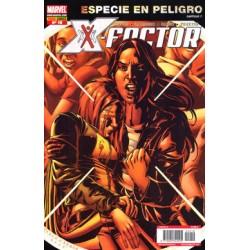 X-Factor, 19