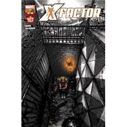 X-Factor, 29